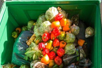 lutte-contre-le-gaspillage-alimentaire-:-des-precisions-pour-certains-professionnels…