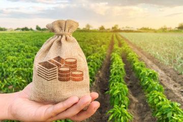 agriculteurs-et-aides-animales-:-la-teledeclaration-pour-2021-est-ouverte-!