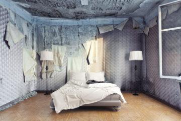 logement-insalubre-:-du-nouveau-au-1er-janvier-2021