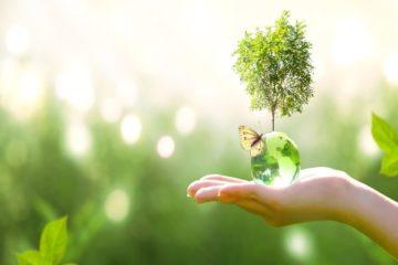 comment-faire-rimer-«-transition-numerique-»-avec-«-exigence-environnementale-»-?